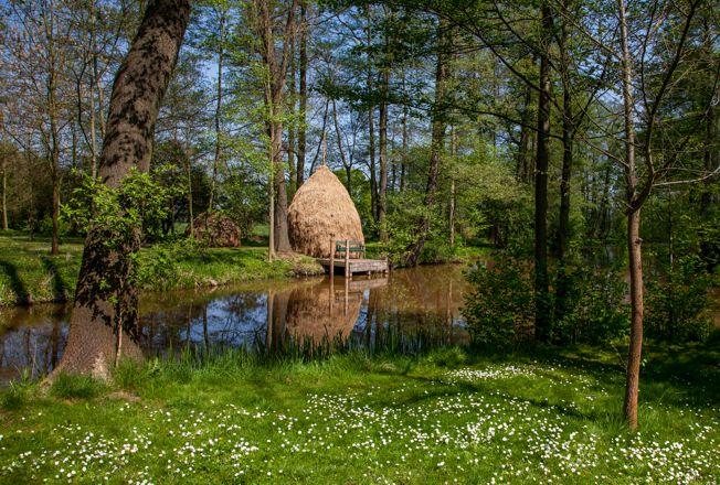 Frühlingserwachen am Naturhafen Raddusch, Foto: Peter Becker