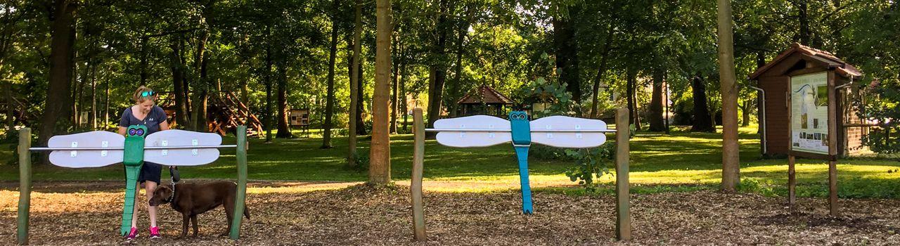 Libellenpark am Naturhafen in Raddusch