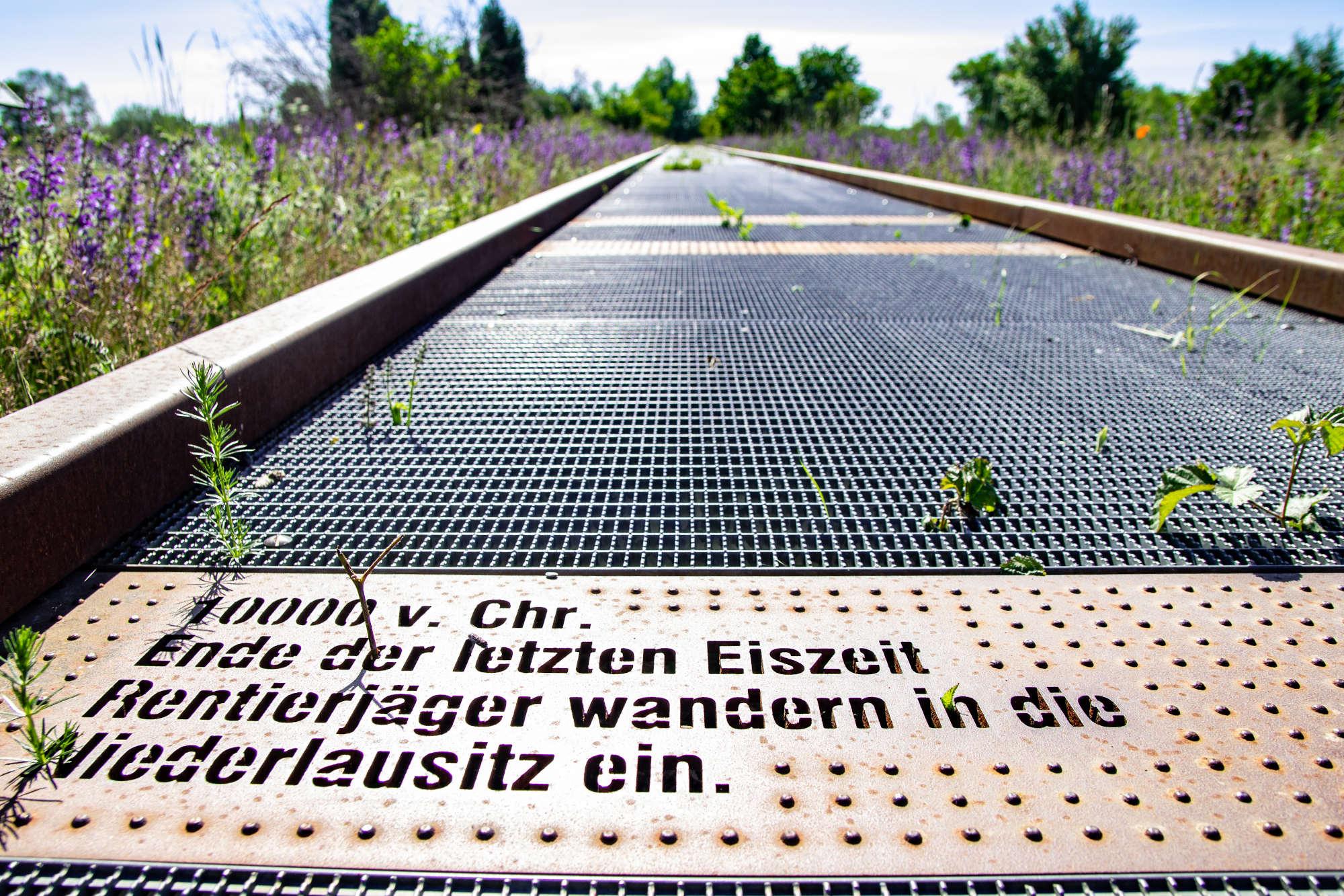 Zeitsteg Slawenburg Raddusch, Foto: Oe Grafik_sk